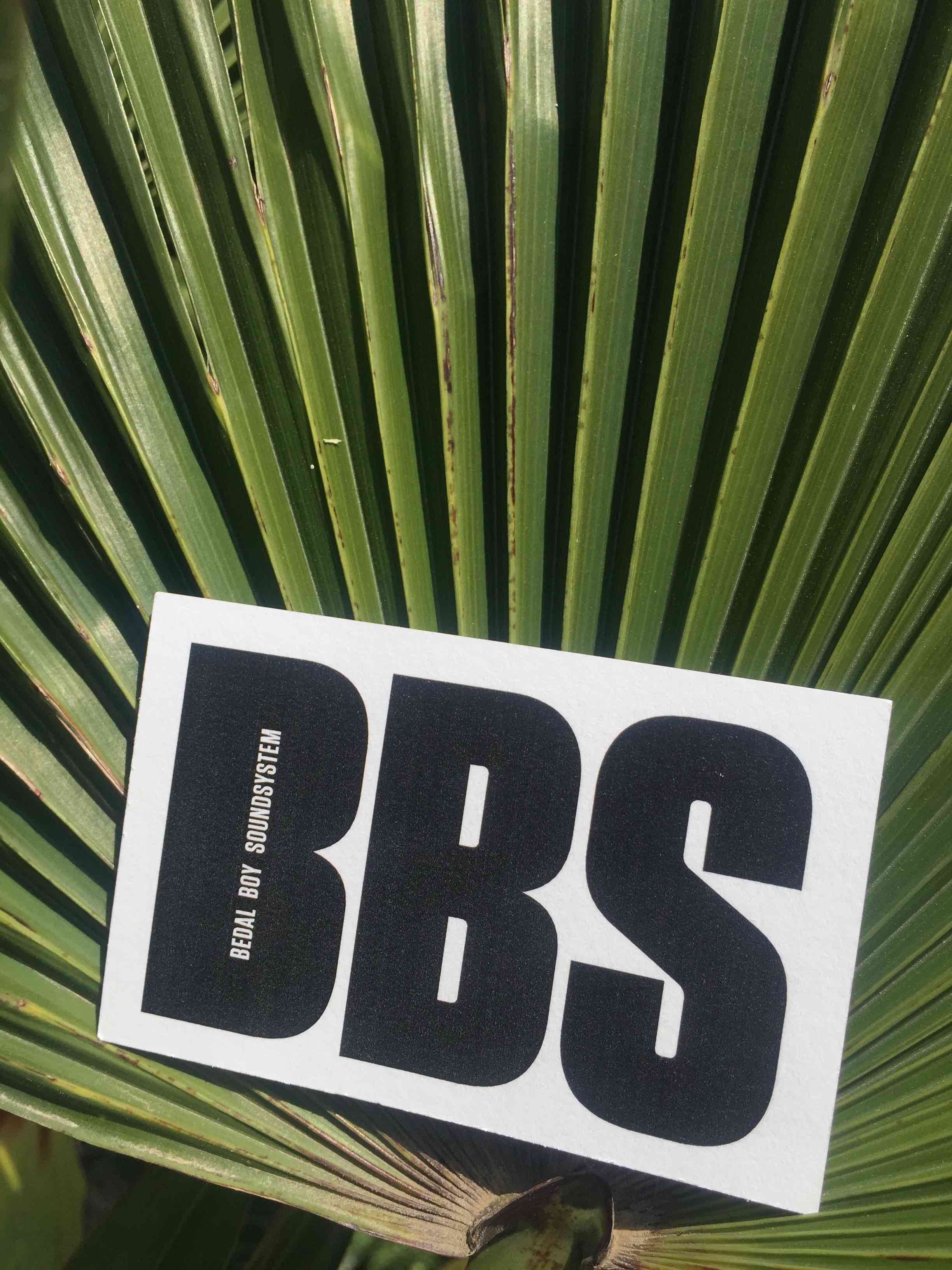 BBS logo on palm leaf